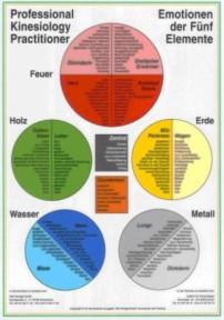 Emotionen nach der 5 Elemente
